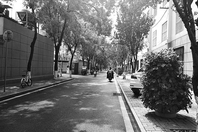 太原小店区多街道绿树成荫设凉亭 美化环境方便居民