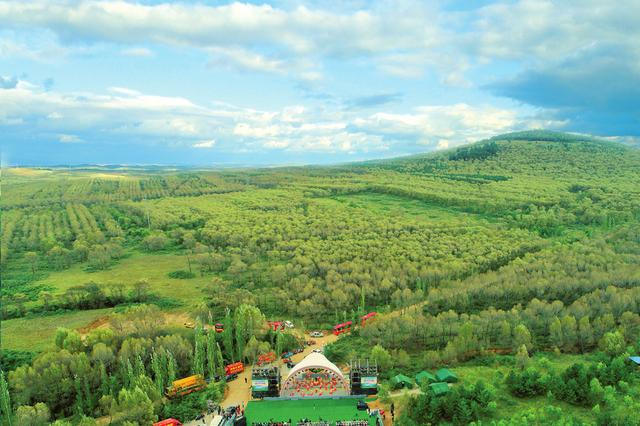 山西年底前将新增60万亩省级人工林