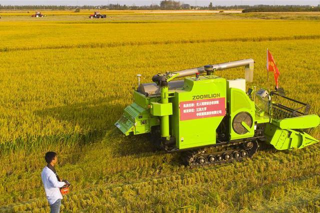 山西采取多项措施加强冬小麦冬前田间管理