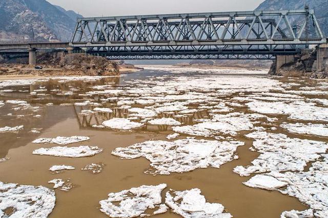 视频丨黄河今冬首次流凌 芮城一大爷岸边捞莲菜