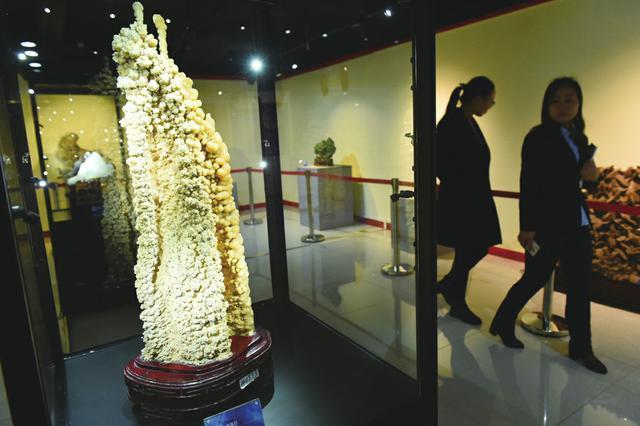 游山西省地质博物馆饱览自然之美