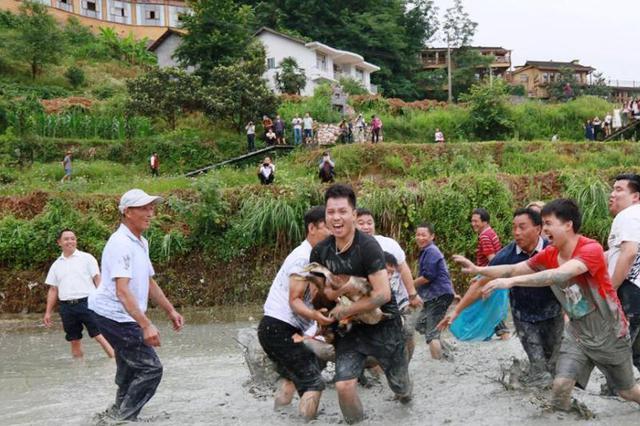 山西命名百家3A级乡村旅游示范村 探索可复制经验