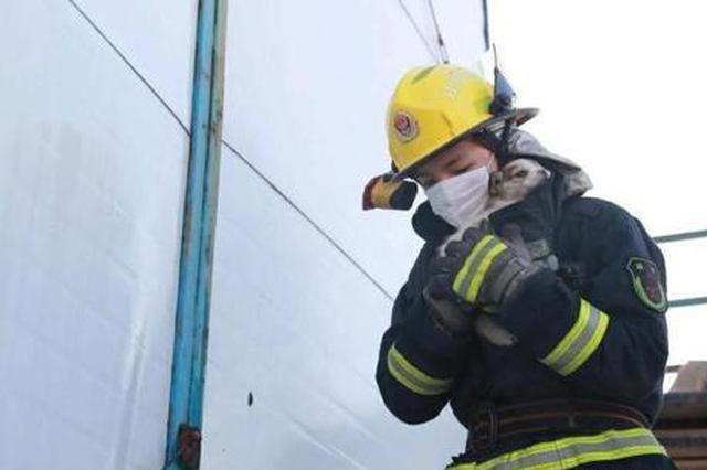 山西太原一工地彩钢板房着火 消防员救出受伤小狗