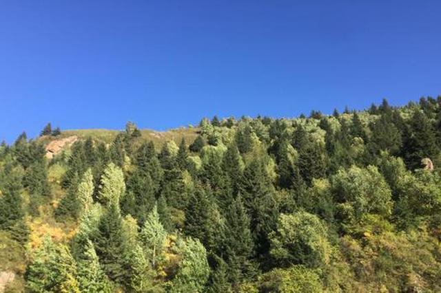 山西持续推进国土绿化 十四五确保营造林2000万亩