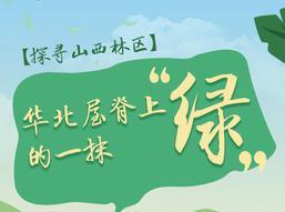 """探寻山西林区:华北屋脊上的一抹""""绿"""""""