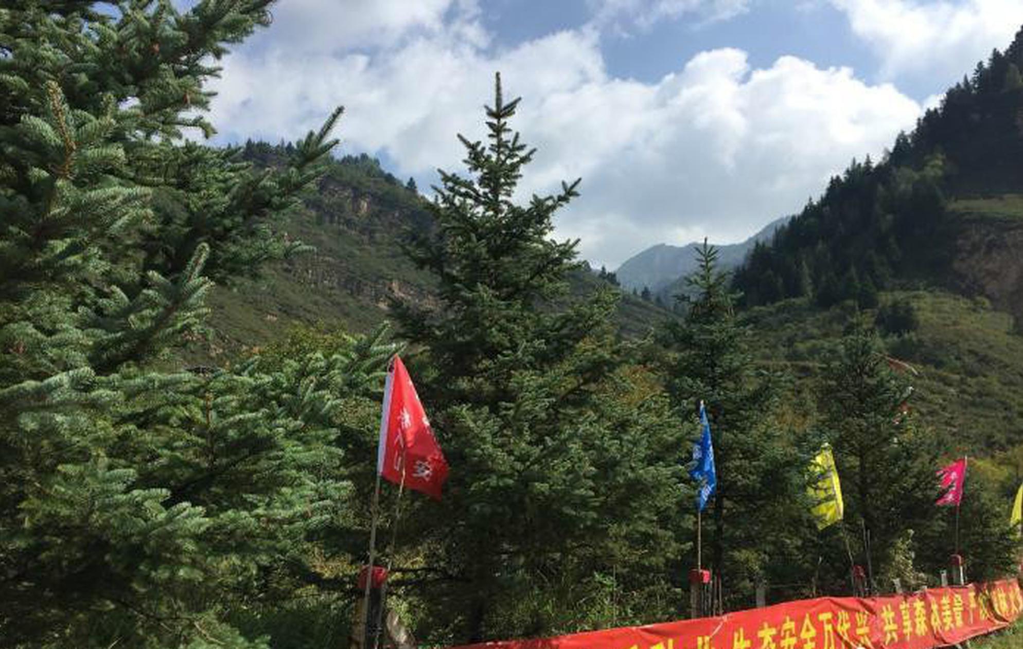 山西省森林公安局:全面禁止野外非法用火