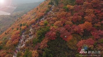 金秋十月登崛围山看漫山红叶