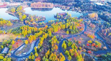 临汾涝洰河生态公园秋意正浓