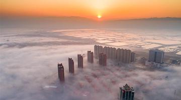 运城现平流雾景观
