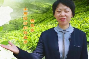 """臨汾市婦聯主席直播""""帶貨""""山西藥茶"""