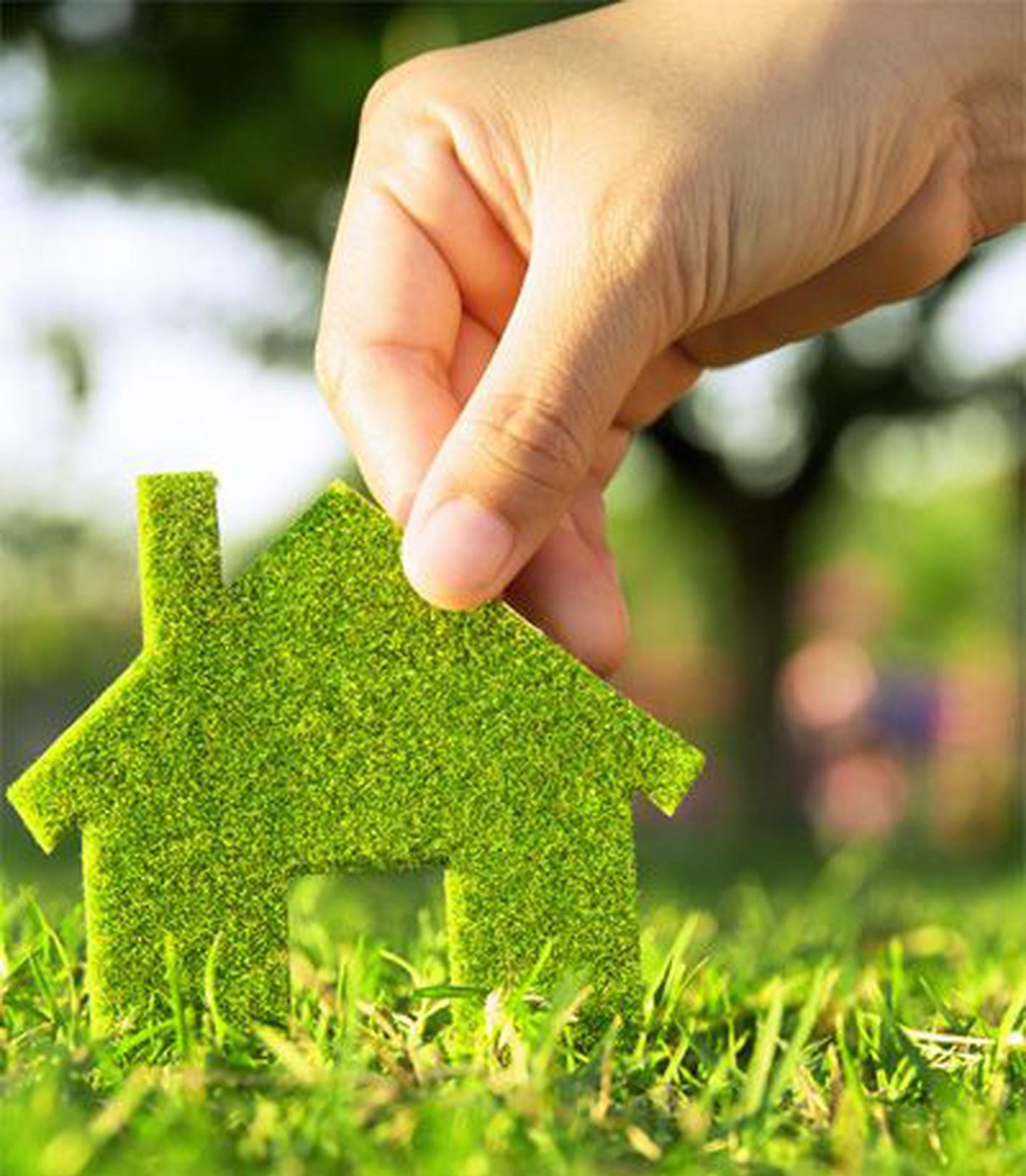 太原城市绿化条例出台 擅自占用城市绿地最高罚3万