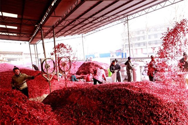 辣椒之乡红红火火迎新年