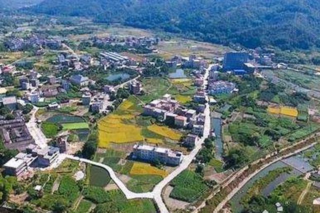刘华代表:乡村振兴基础环境先改善