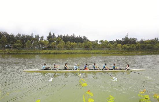 """大沙河生态长廊示范段开放 可在深圳""""塞纳河""""泛舟游览"""