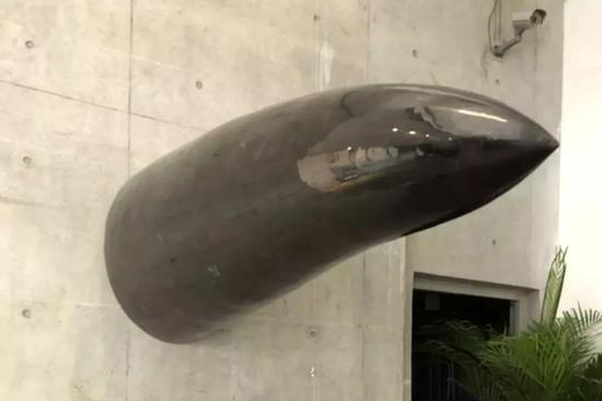 庞海龙,《大物》,长220cm,直径80cm,牛骨综合材料,雕塑装置,2017