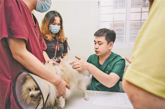 日前,宠主带狗狗去瑞鹏宠物医院深圳第二中心医院进行身体检查。