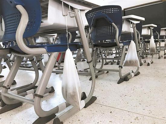 教室内摆放多株绿植,课桌旁挂着茶包。深圳晚报记者 王宇 摄