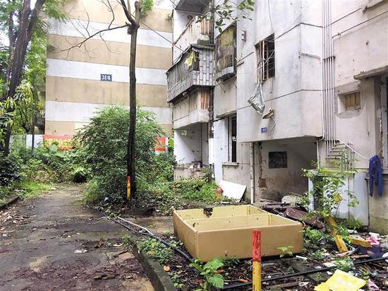 ▲小区内房屋破旧,年久失修,存在重大安全隐患。