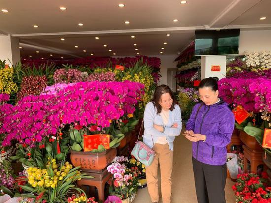 ▲ 不少市民提前到百合花卉小镇购买年宵花。