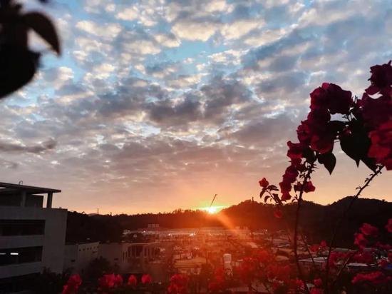 市三院重症监护室南区的夕阳