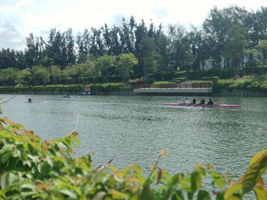 ▲赛艇划过大沙河。深圳晚报记者 吴洁 摄