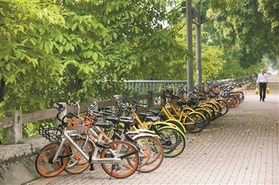 在深圳的大街小巷,能看到各种品牌的共享单车。 深圳晚报记者陆颖 摄