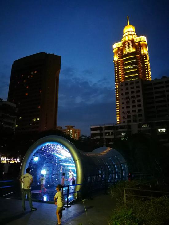 钟飙 + 严永红,《洞见》,800×500×450cm,交互影像装置,2018