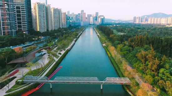 ▲大沙河水清岸绿。深圳晚报记者 宁杰文 摄