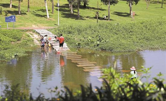 近日,天气炎热,市民在中心公园河边戏水。 深圳商报记者 钟华登 摄