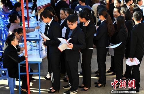 资料图:毕业生双向选择洽谈会。中新社记者 李进红 摄