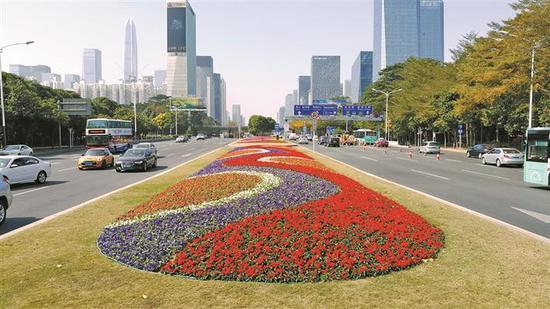 深南大道景观。本版图片除署名外均由深圳市城市管理局提供