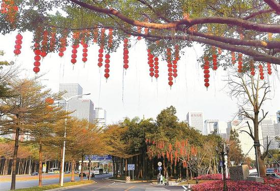 全市190条道路悬挂灯笼10万个 传递深圳最美新春祝福