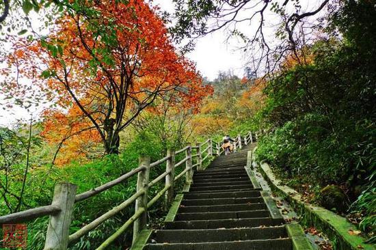口碑最好的中国登山旅游路线