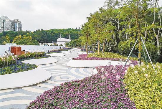 ▲园博园地下车库屋顶区域通过设置花境、艺术花坛,改造成趣味盎然的小游园。深圳晚报记者 冯明 摄
