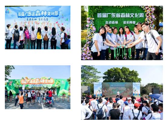第二届森林文化周广东沙头角林场自然嘉年华开始招募机构