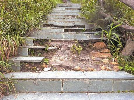 梧桐山泰山涧登山道台阶出现破损 目前已报修