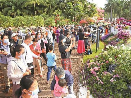 市民游园赏花欢度周末