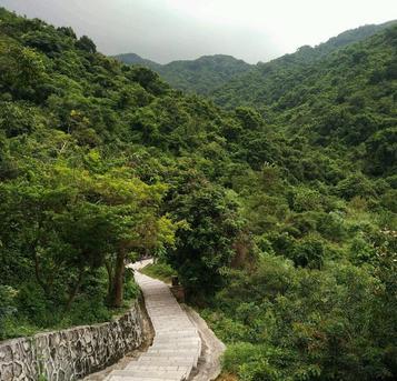 青山绿水 美丽羊台