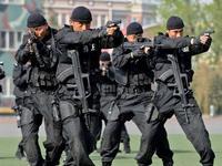 香港飞虎队30秒清剿贼窝 检获价值500万港元赃物