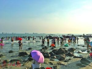 官湖海滩上礁石密布