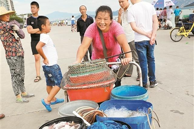 南海野生海鲜最快一周内批量上市  9月吃海鲜更实惠