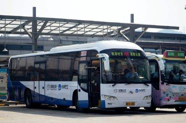 深圳首批特色公交上线 首先在宝安、龙华、光明推广