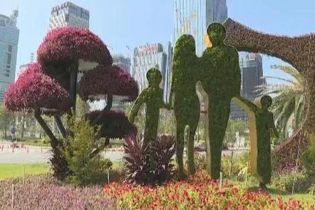 金秋深圳似锦繁花 展现着独特的都市魅力和南国风情