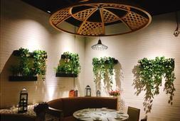花园里隐藏的浪漫Fusion餐厅