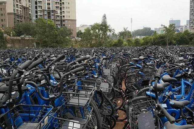 """龙岗惊现单车""""坟场""""   深圳5万辆""""僵尸车&quo"""