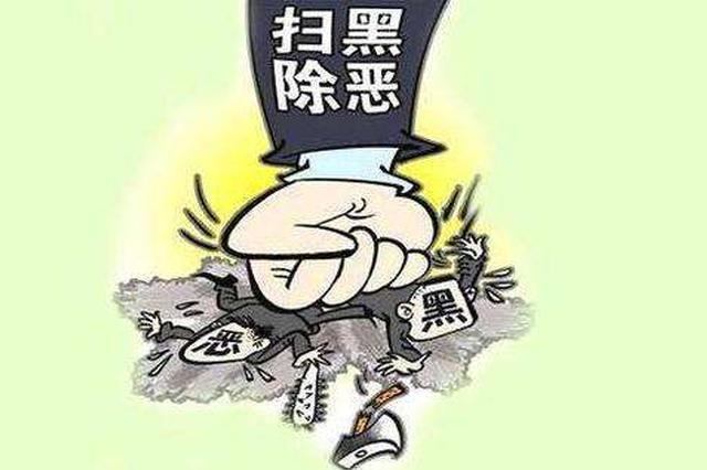 """扫黑除恶进行时 深圳公安""""组合拳""""严打多领域涉黑恶势力"""