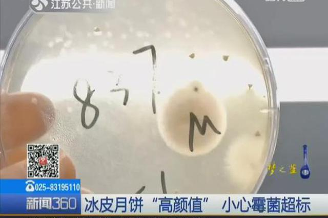 深圳人爱吃的这种月饼上热搜 吓坏网友:五仁天下第一