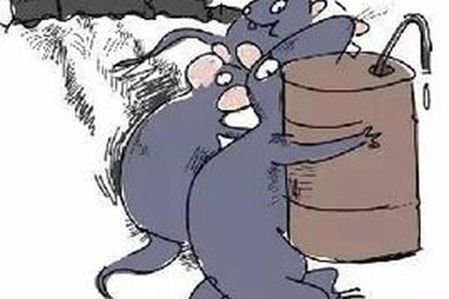 """光明警方?#35828;?#19968;?#36873;?#27833;老鼠"""" 现场查获柴油10余吨"""