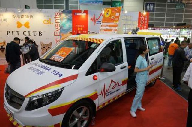香港推宠物救护车服务 暂只接收猫和狗使用服务