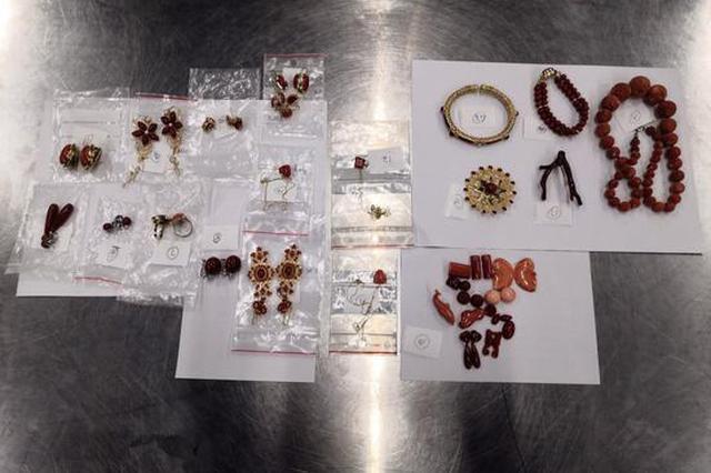 西九龙站海关查获18件濒危物种红珊瑚制品 共计重346.7克
